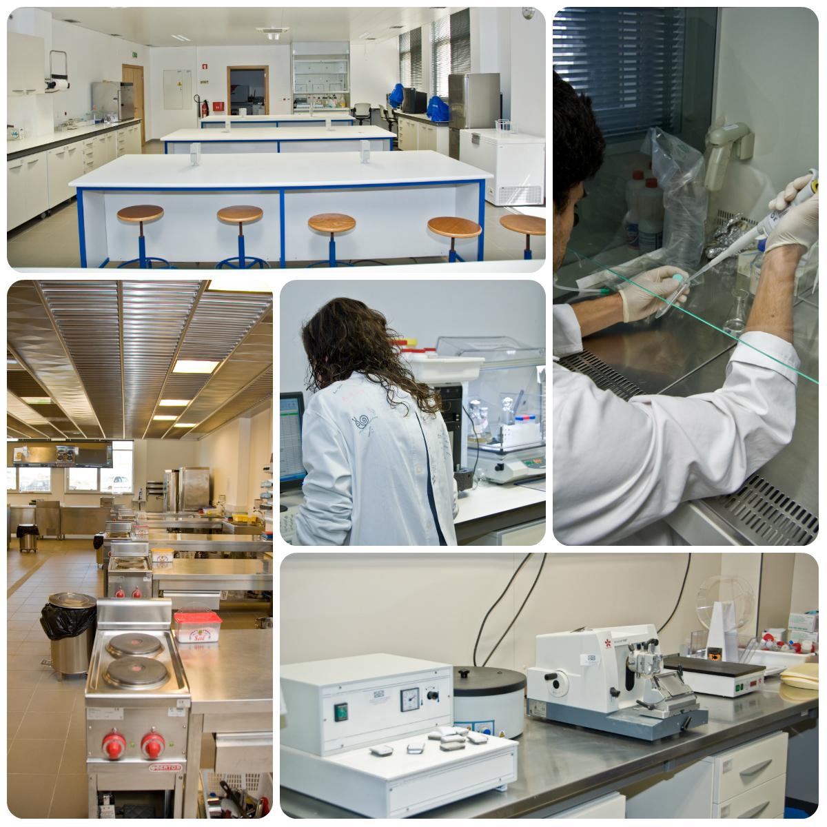 14798_laboratorios