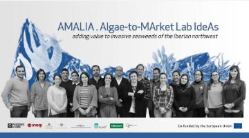 "Projeto ""AMALIA (Algae-to-MArket Lab IdeAs)"
